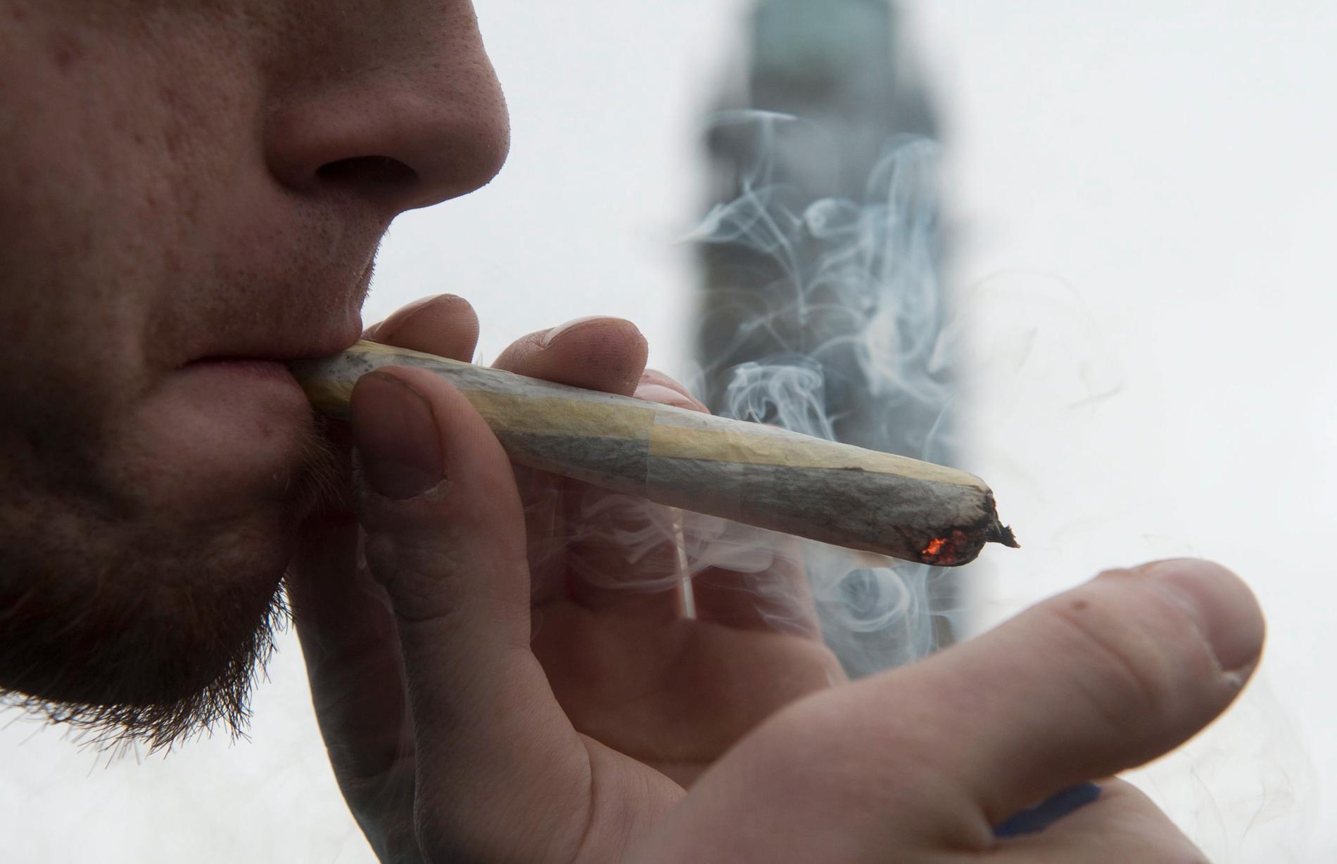 """Av namnen som öppet stödjer en avkriminalisering av cannabis för eget bruk, och som listas i kampanjen """"Cannabiskrysset"""", kandiderar majoriteten för Centerpartiet eller Liberalerna. Arkivbild."""
