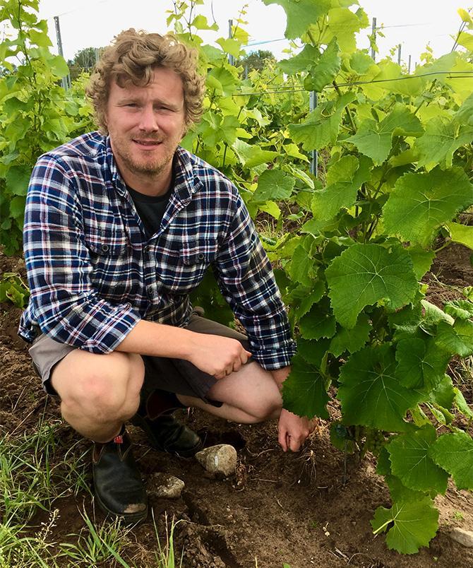 Australiern Ryan Montgomery jobbar på Thora vingård.
