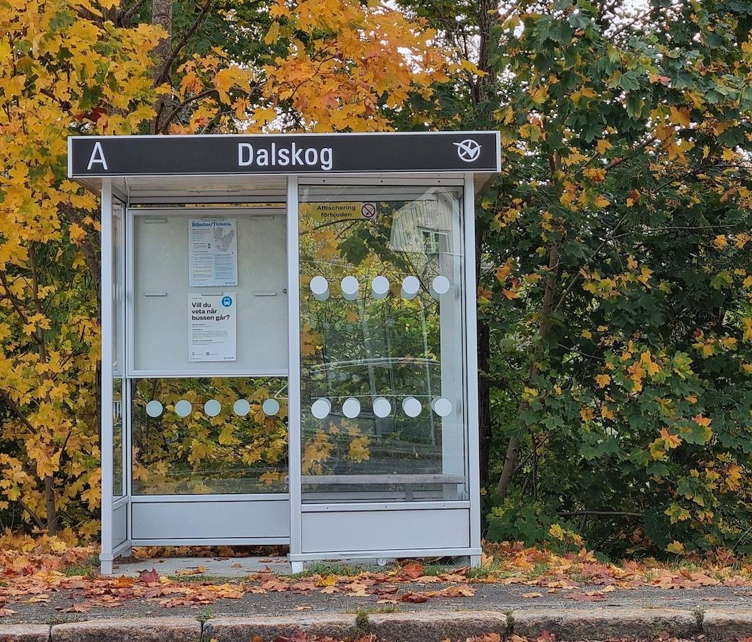 Busshållplatsen där Camilla födde två barn.