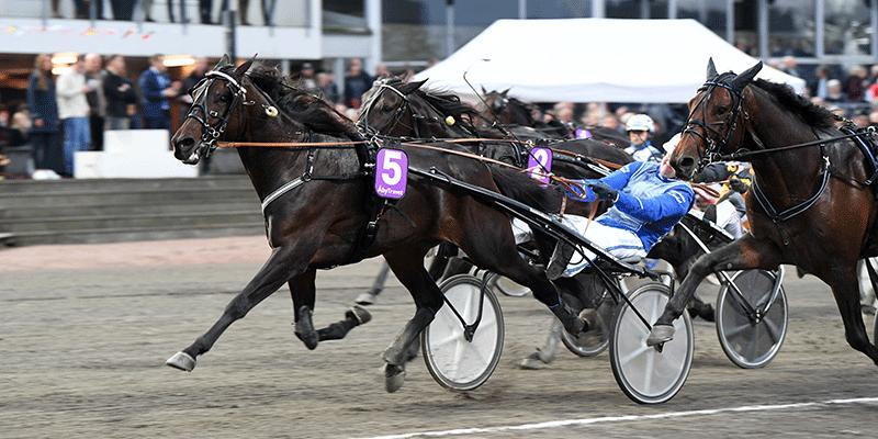 Bravo Sabotage och kusken Andreas Lövdal vann Ungdoms-SM på Åbytravet (V75–4).