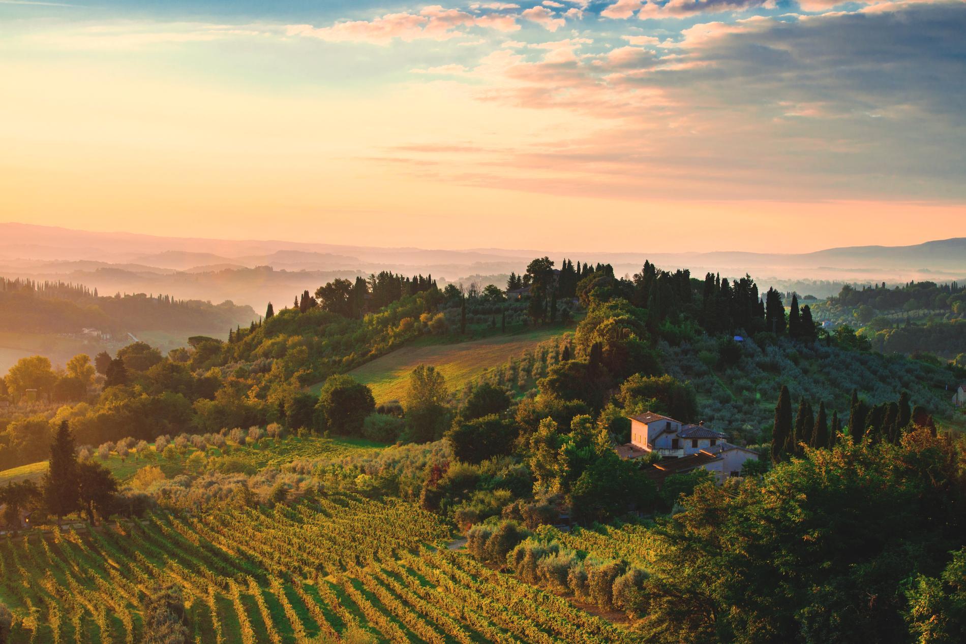 I Toscana hittar filmens huvudroll vänner och kärlek.