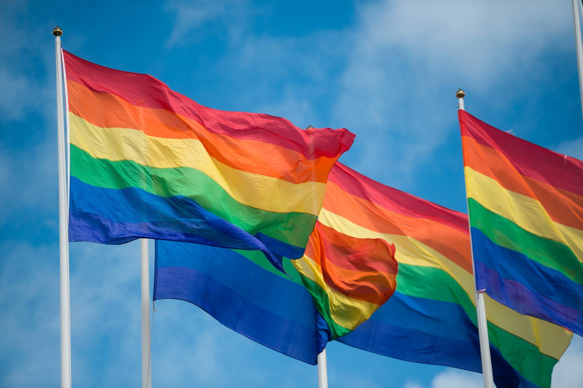 Regnbågsflaggor. Arkivbild.