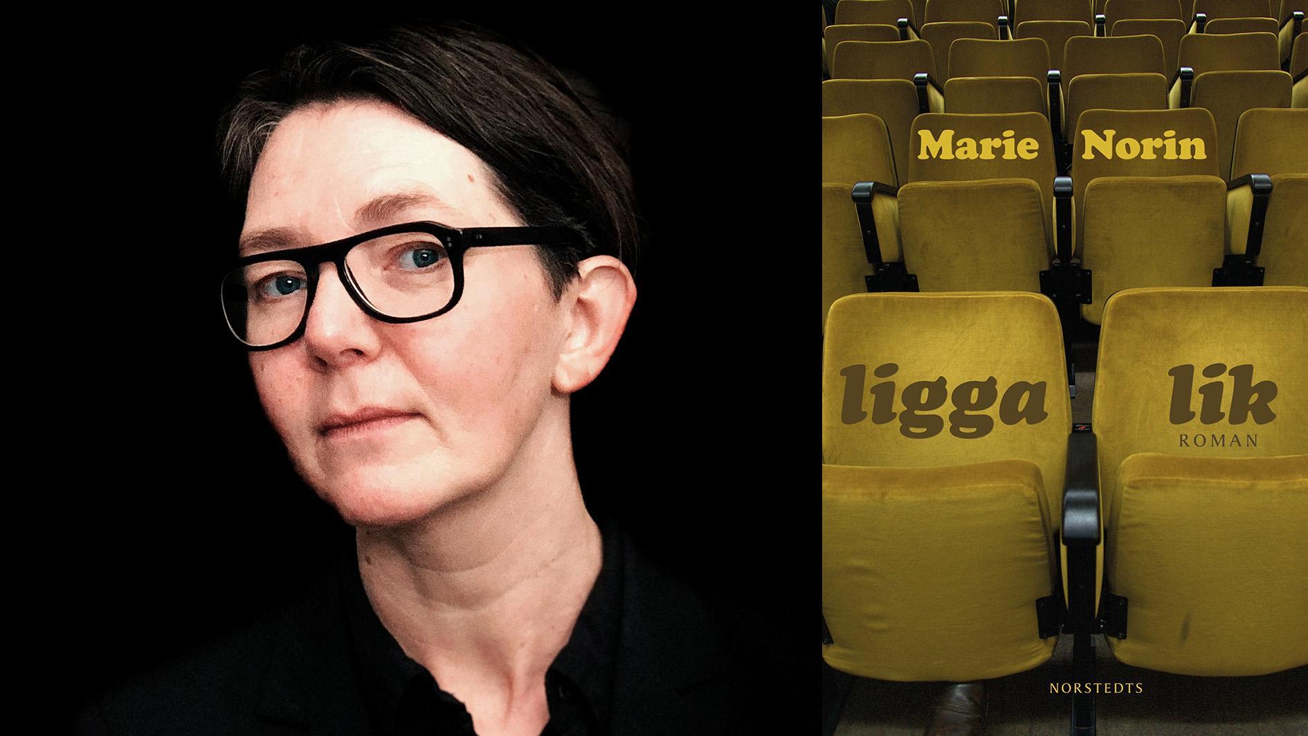 Marie Norin (född 1967) debuterade 1996 och har givit ut ett tiotal böcker i olika genrer. Hon är också verksam som översättare och samtalsterapeut.