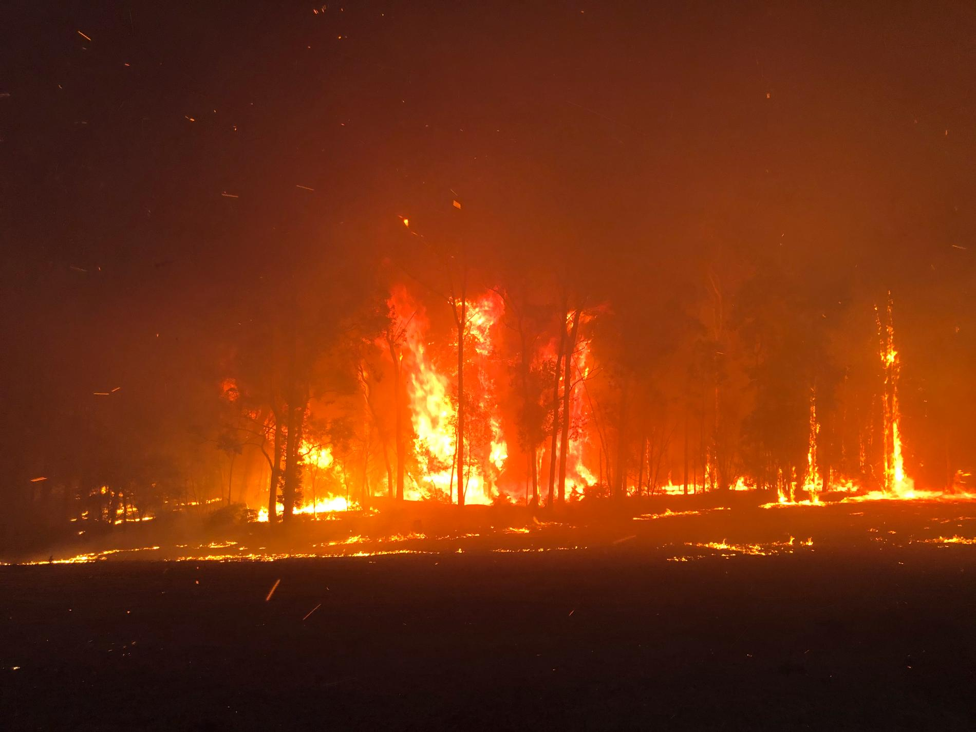 Varma och torra dagar bidrar till ökad risk för skogsbränder.