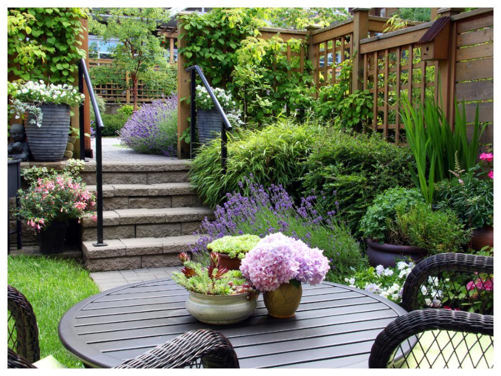 Anlita en trädgårdsexpert om du känner att projektet är för svårt eller för stort.