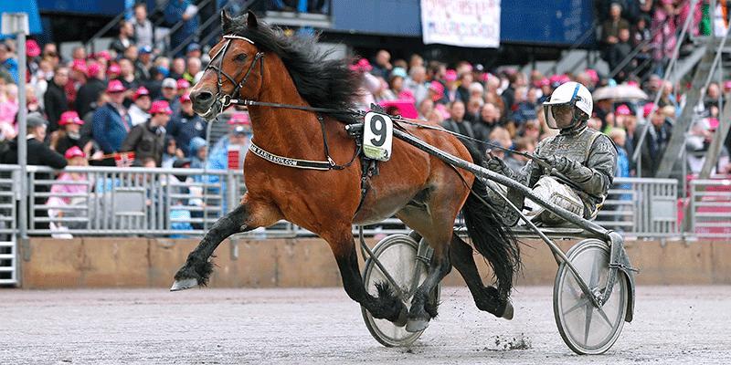 Björn Karlsson och Tangen Haap vann Elitkampen på Solvalla (2019). Nu drömmer tränaren om en ny titel 2022.