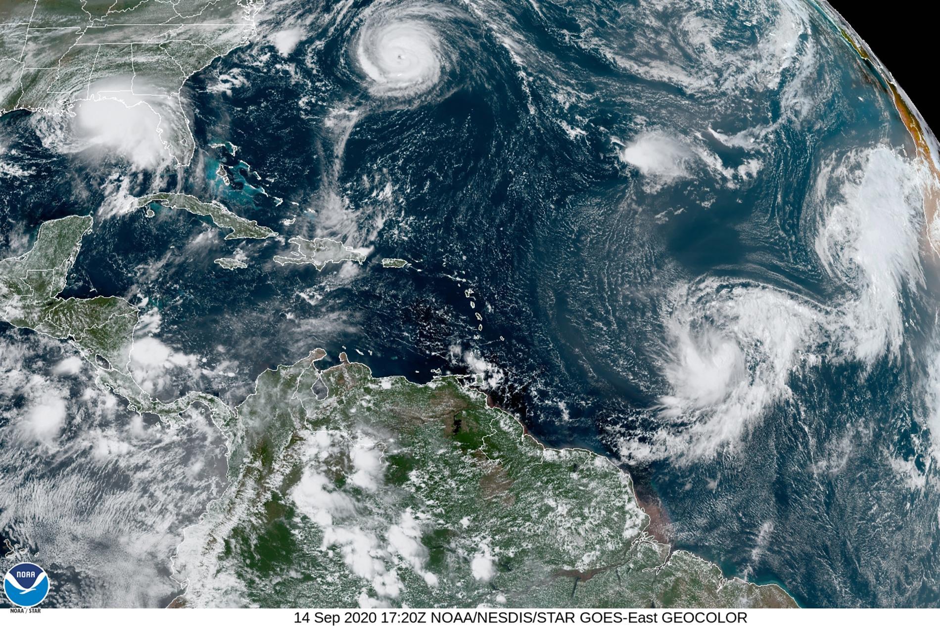 Satellitbild över de fem tropiska ovädren i Atlanten just nu: Sally i Mexikanska golfen, Paulette vid Bermuda samt de tre oväder som fått namnen Rene, Teddy och Vicky.