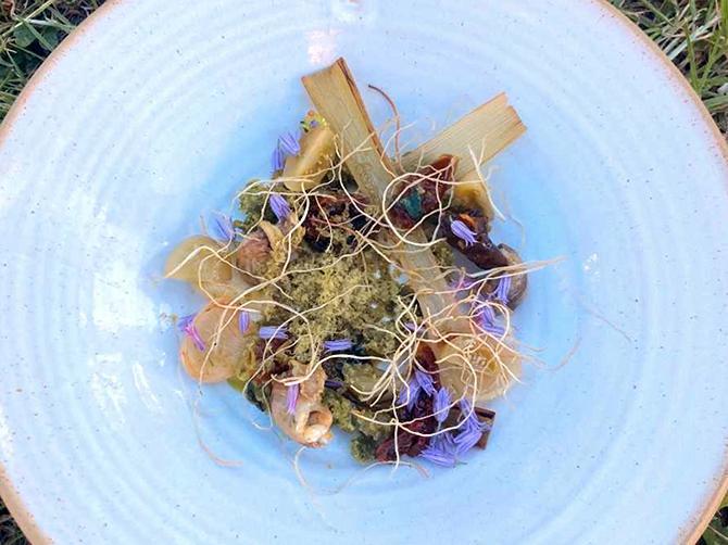 Snigel med konfiterad vitlök, friterade vitlöksrötter, tomat och ett rivet snigelsmör, från Lilla Bjers gårdskrog.