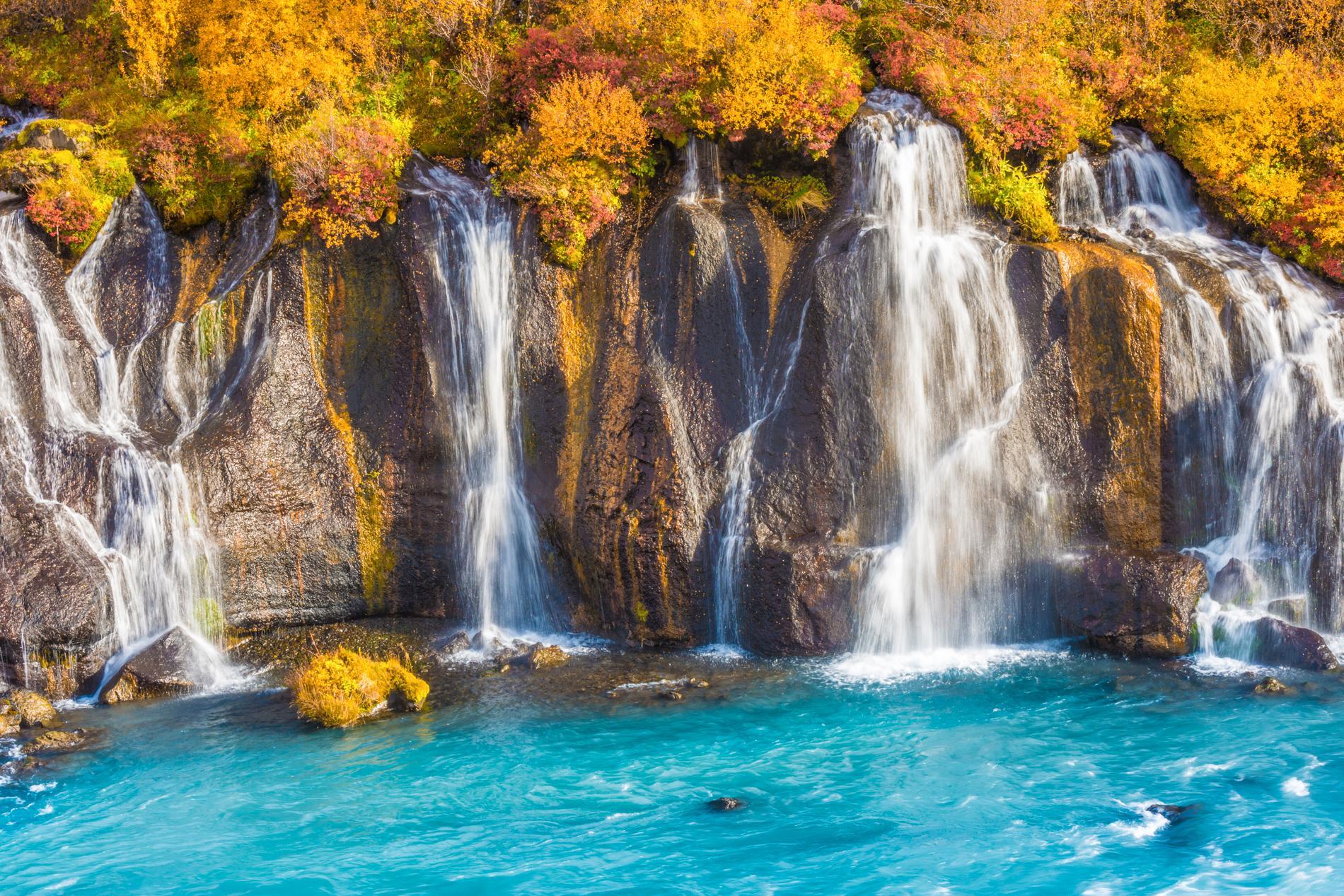 Vid vattenfallen Hraunfossar bildas en vacker kontrast mellan höstlöv och vattnets klarblå färg.