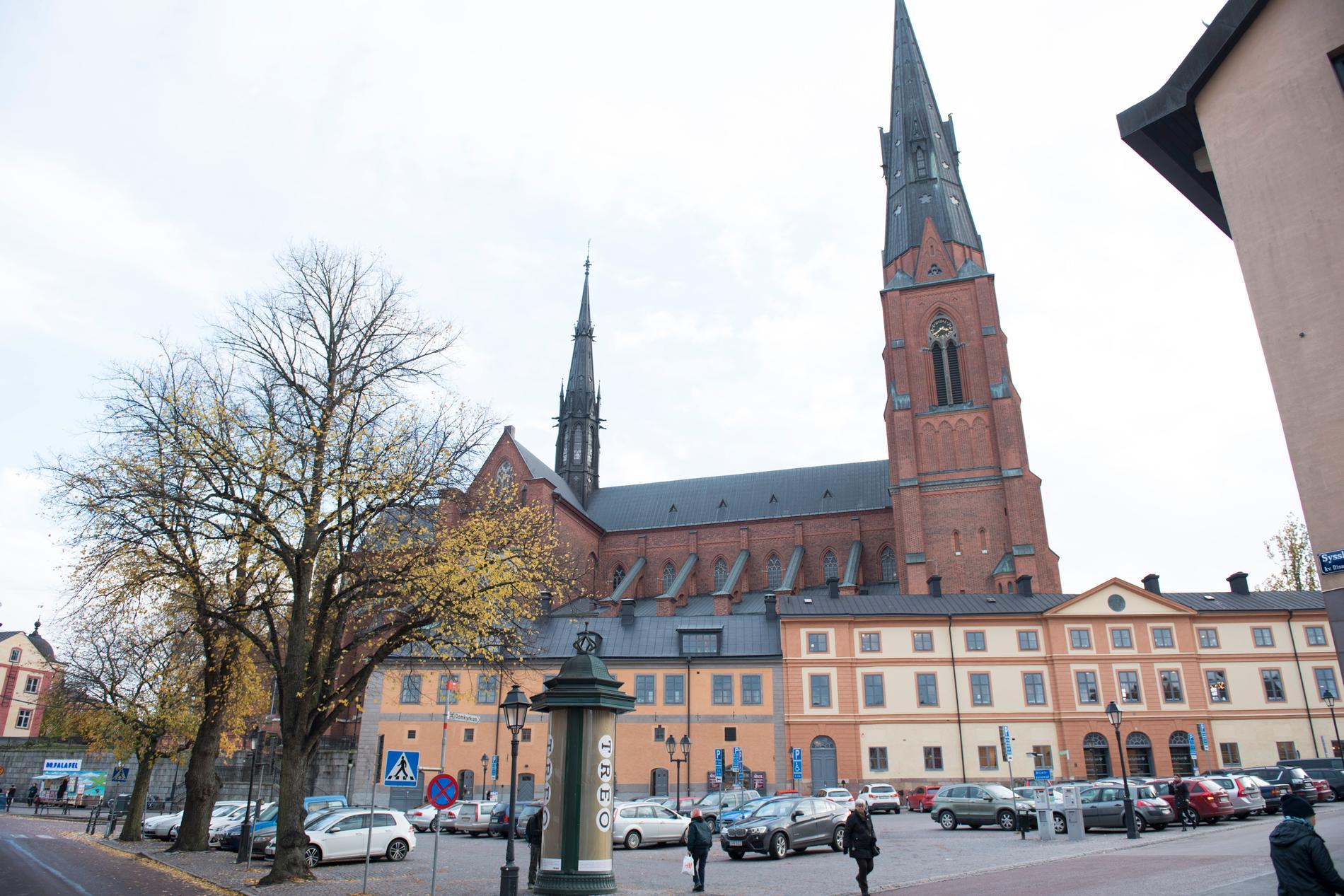 """""""Det finns samtidigt generellt inom kyrkan men i Frimodig kyrka i synnerhet ofta en gedigen och personlig erfarenhet av andra länder, vilket gör kyrkosynen helt väsensfrämmande för en nationalistisk idé om Svenska kyrkan"""" skriver Sofia Lilly Jönsson."""