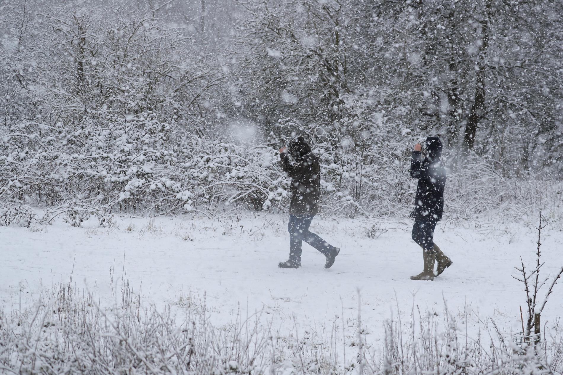 SMHI har uträttat varningar för snöfall i Norrbotten. Arkivbild.