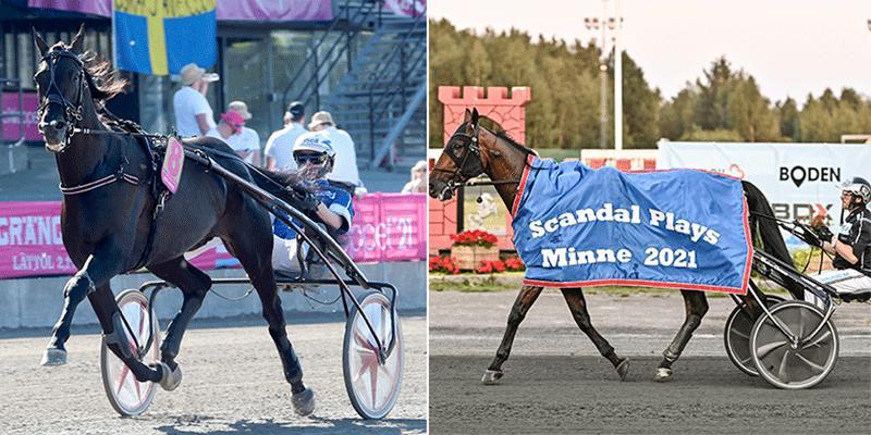 Very Kronos och Mindyourvalue W.F. startar i Åby Stora Pris den 14 augusti.