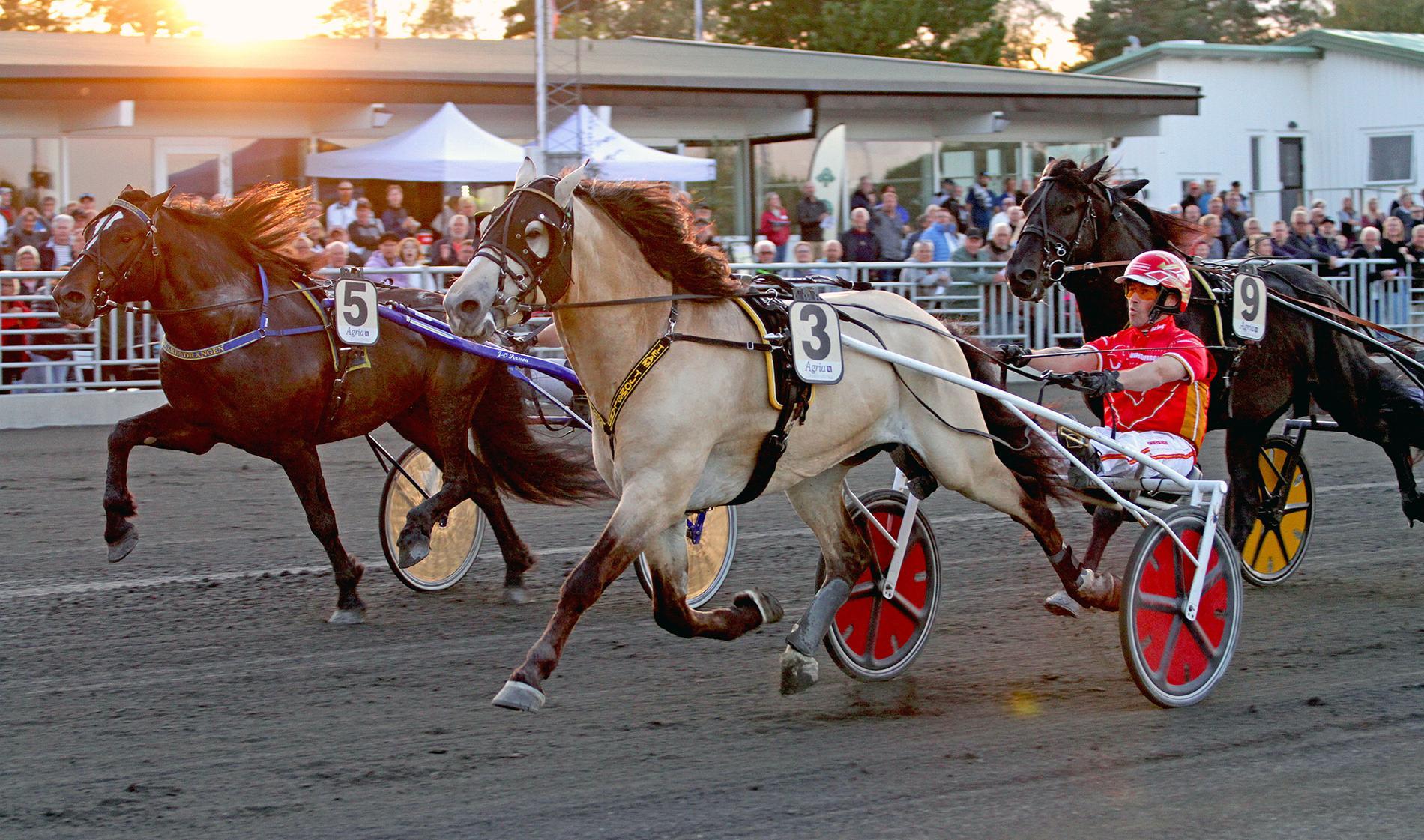 Tangen Bork vann Svenskt Kallblodsderby.