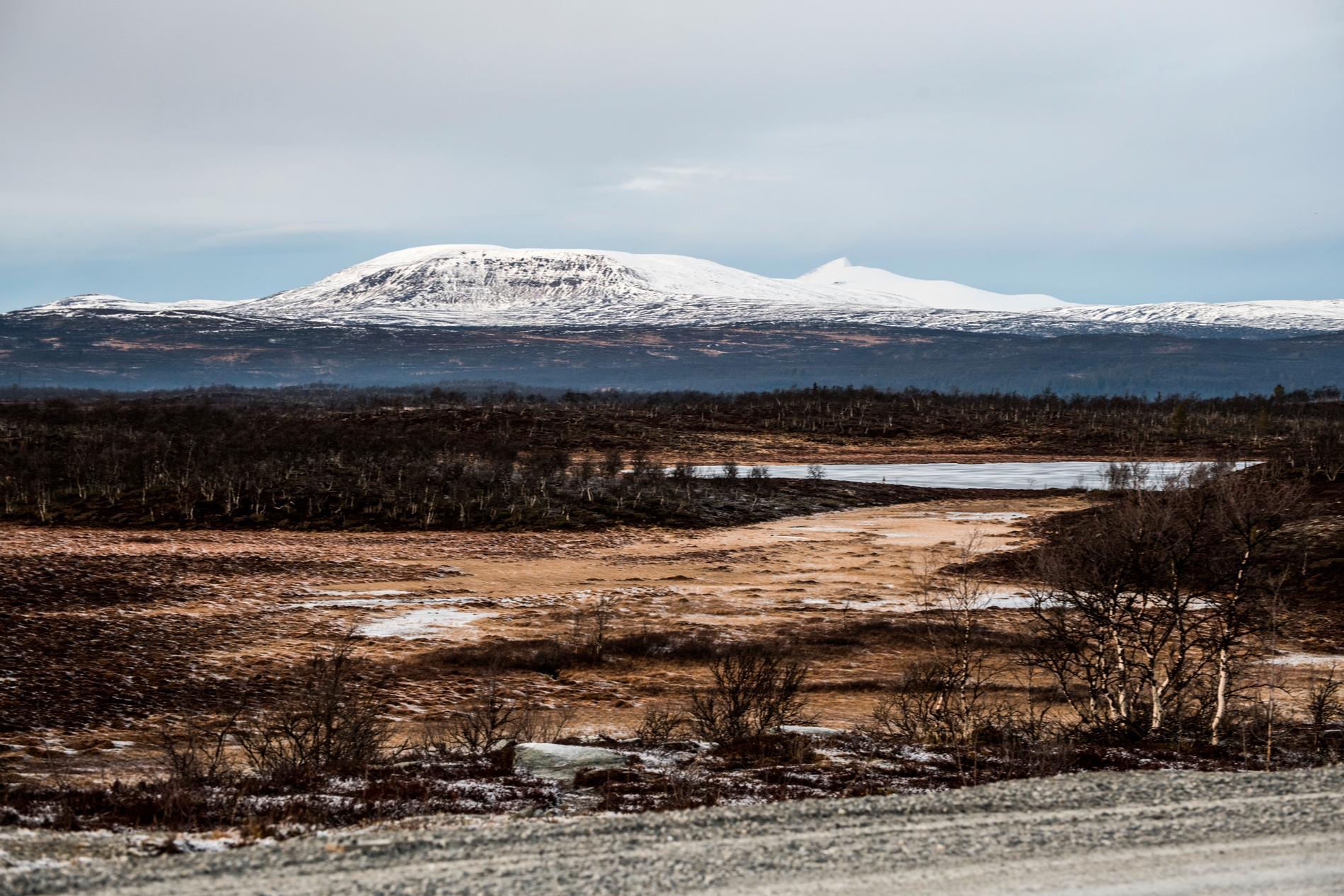 Flatruet är ett fjällområde i Västerbotten.