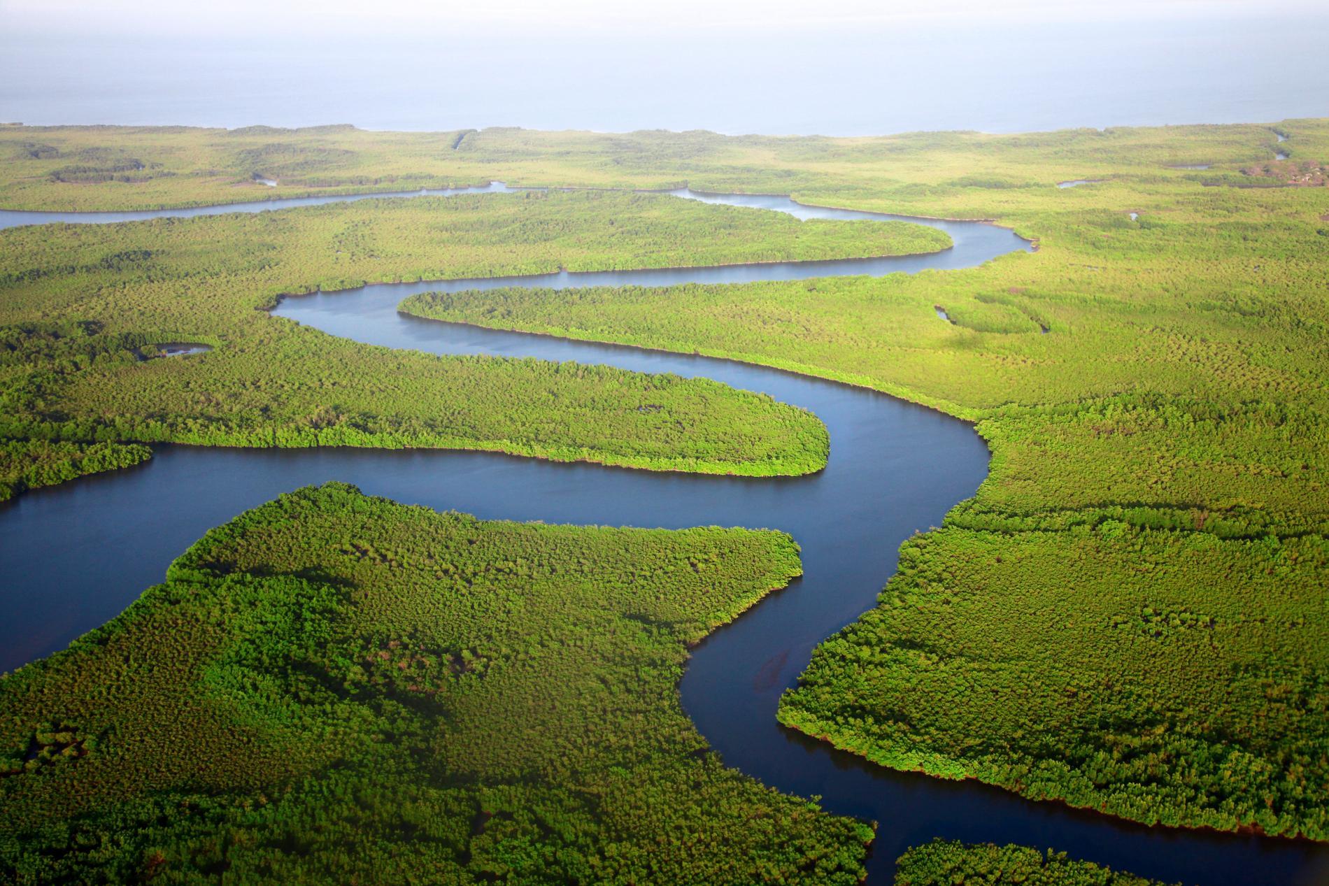 Gambiafloden går genom hela landet.