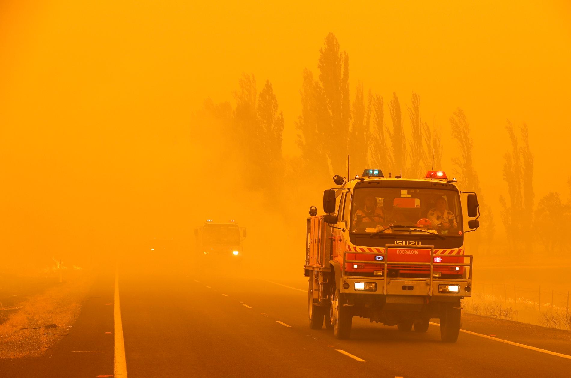 En gräsbrand i Bumbalong, söder om Australiens huvudstad Canberra, i början av februari.