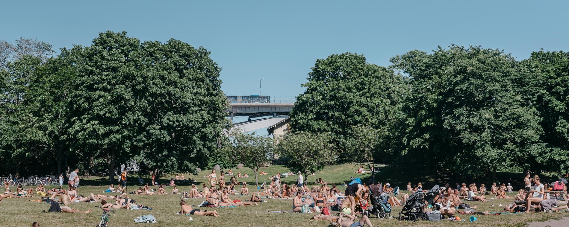Sommarvibb i Stockholms innerstad.