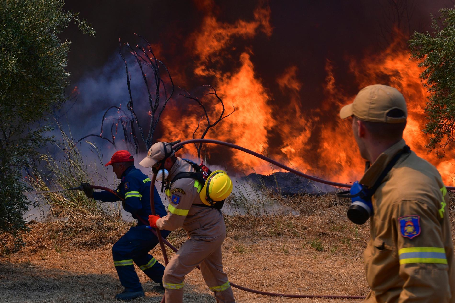 Skogsbrand bekämpas i närheten av Olympia, Grekland.