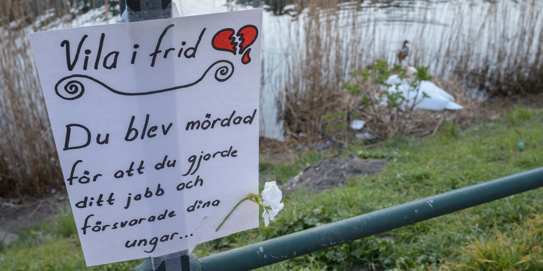 Reaktionen från allmänheten blev mycket kraftig efter beskedet att svanpappan i kanalen avlivats trots att paret ruvade och hade åtta ägg.
