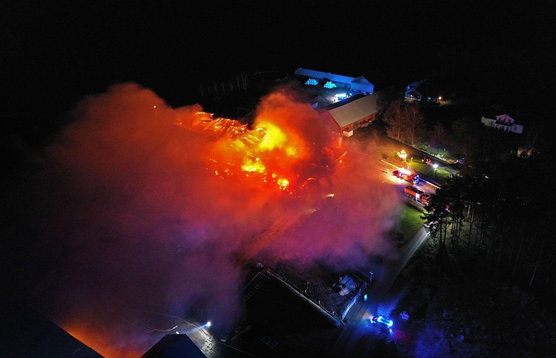 Cirka hundra kor befaras ha dött i branden.