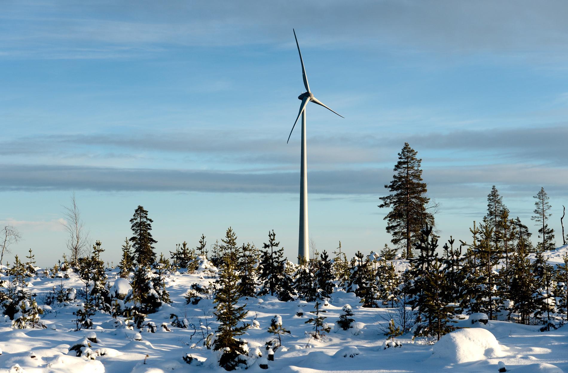 Ett vindkraftverk rasade på måndagen i Ersträsk utanför Piteå. Arkivbild.