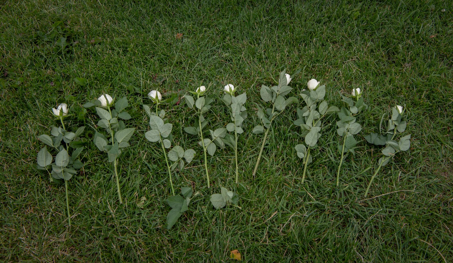 Nio vita rosor – en för varje död person.