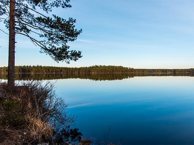 Vandring längs sjö i Tivedens nationalpark. Här finns också en fin badplats med sandstrand.