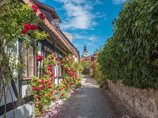Vackra Visby. Mysiga kvarter i Rosornas stad.