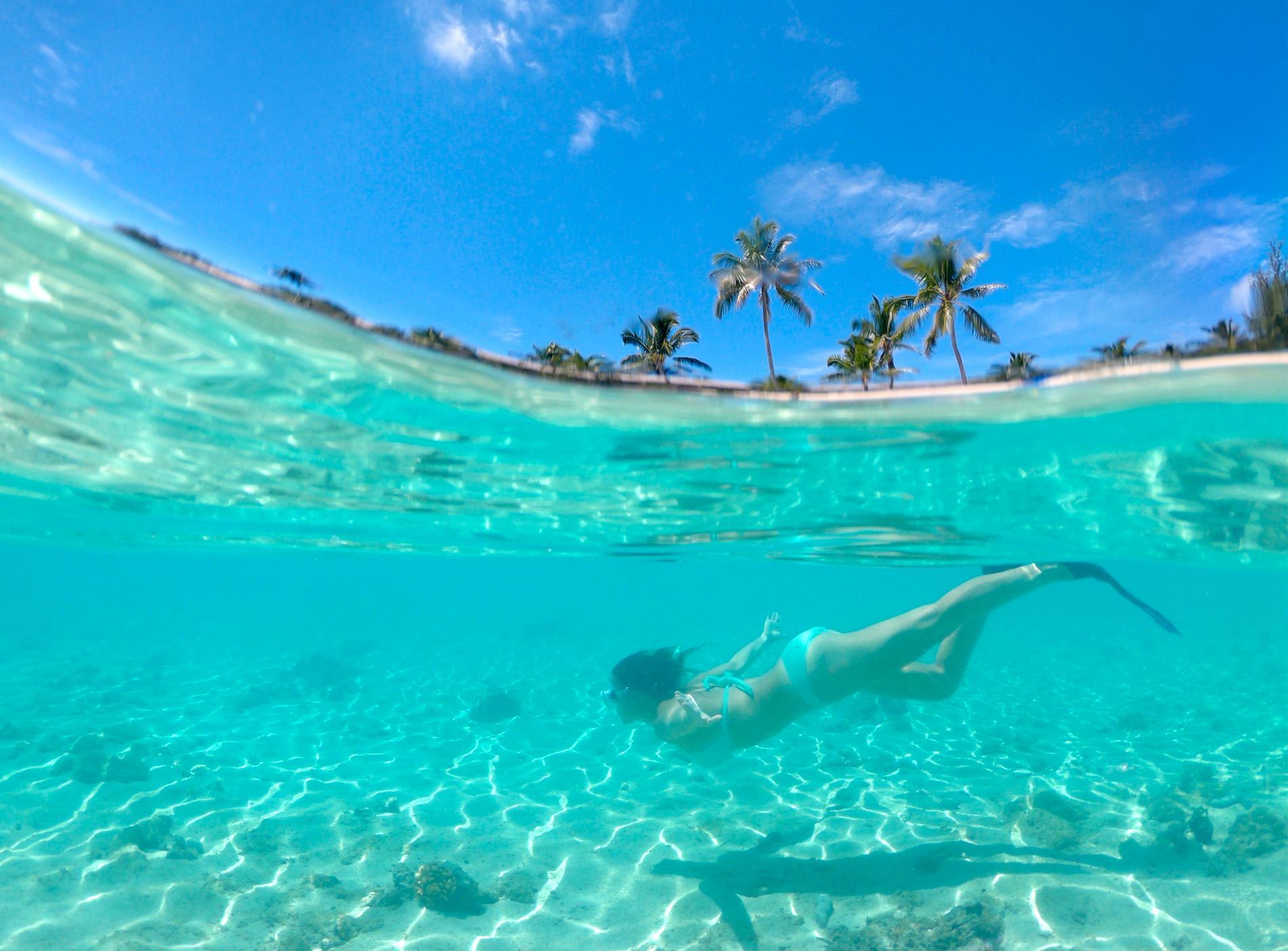 På Cooköarna är naturen skyddad.