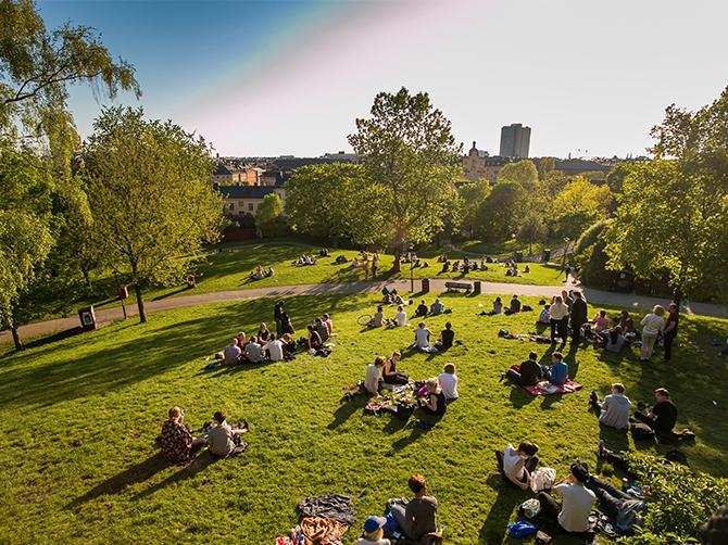 Picknick i en av Stockholms parker.