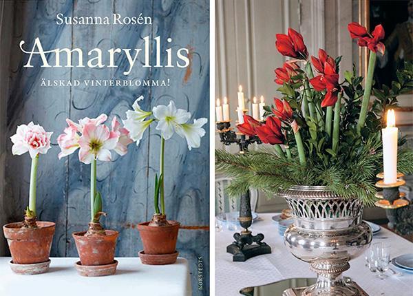 """""""Amaryllis – älskad vinterblomma"""" (Norstedts)."""