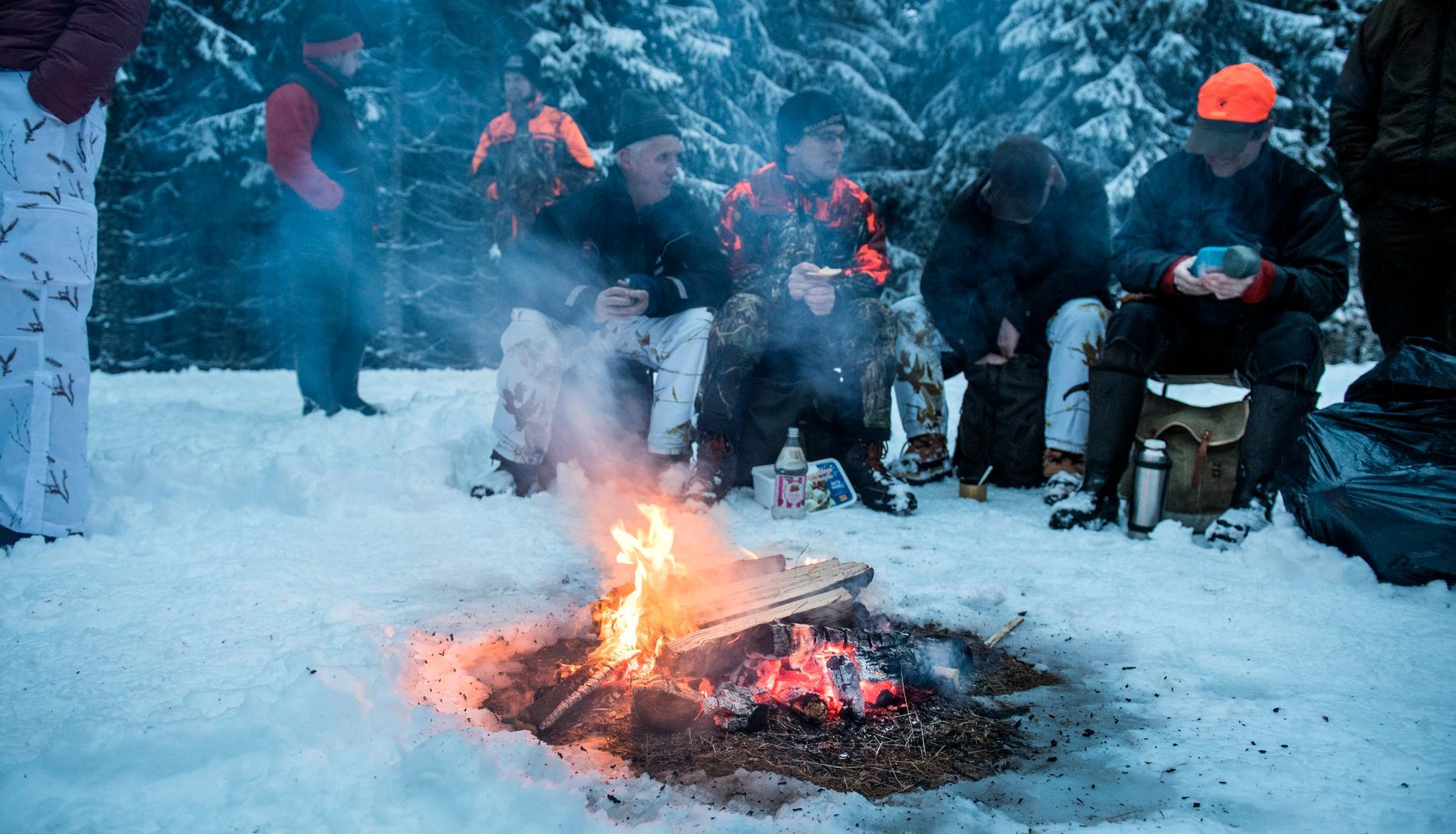 Naturvårdsverket har satt stopp för vinterns vargjakt.