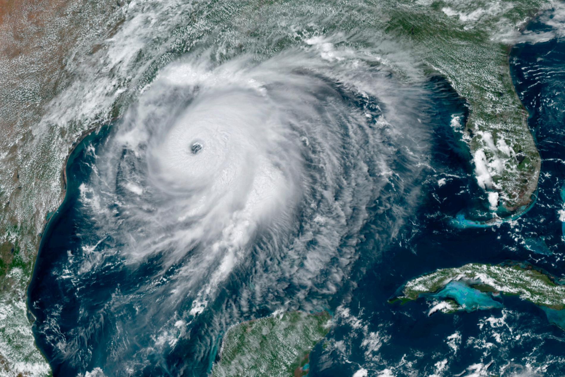 Satellitbild över orkanen Laura nära USA:s sydkust.