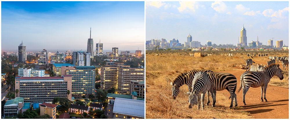 I Nairobi National Park kan man se zebror strosa med skyskraporna i huvudstaden som fond.
