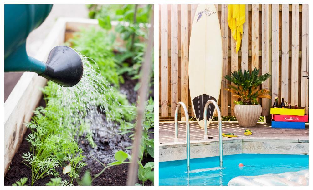 Glöm vattenspridaren och att fylla poolen, vattenbrist leder till bevattningsförbud.