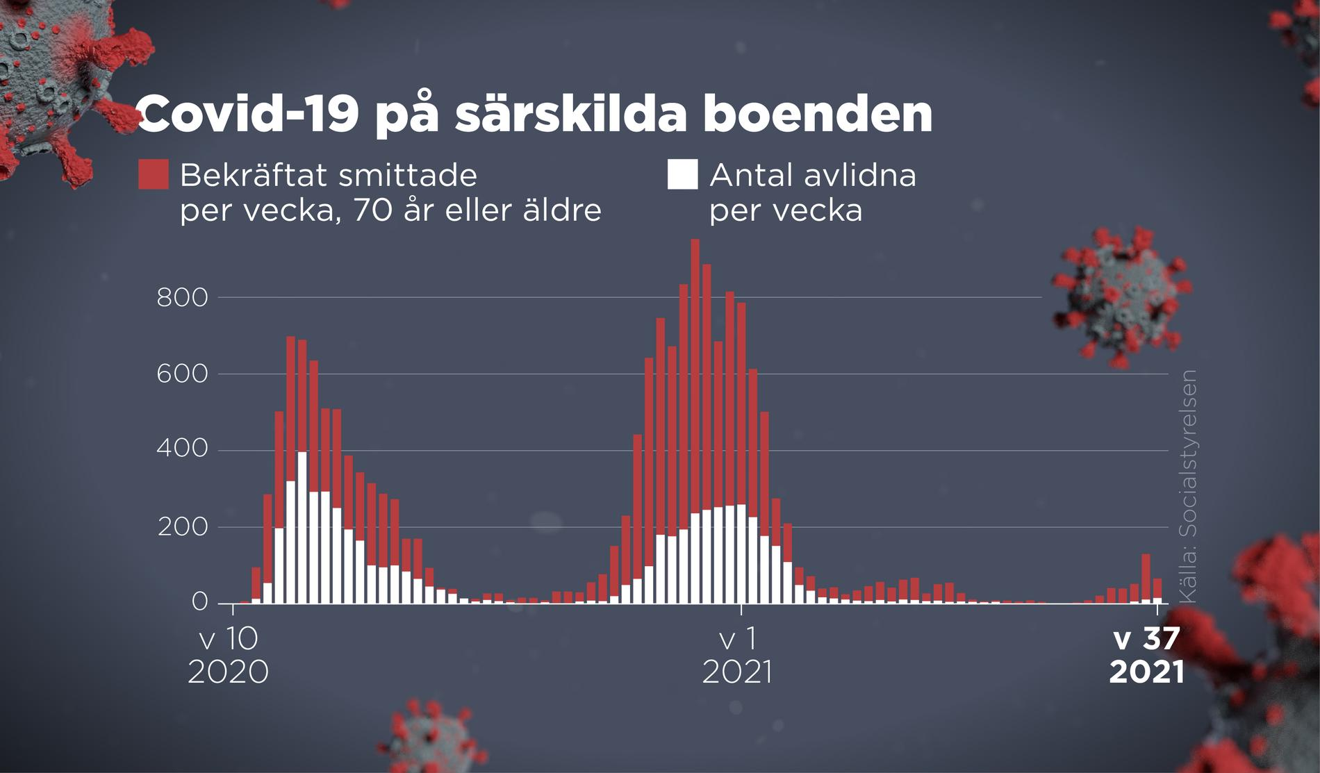 Bekräftat smittade och antal avlidna på särskilda boenden per vecka 2020–2021.