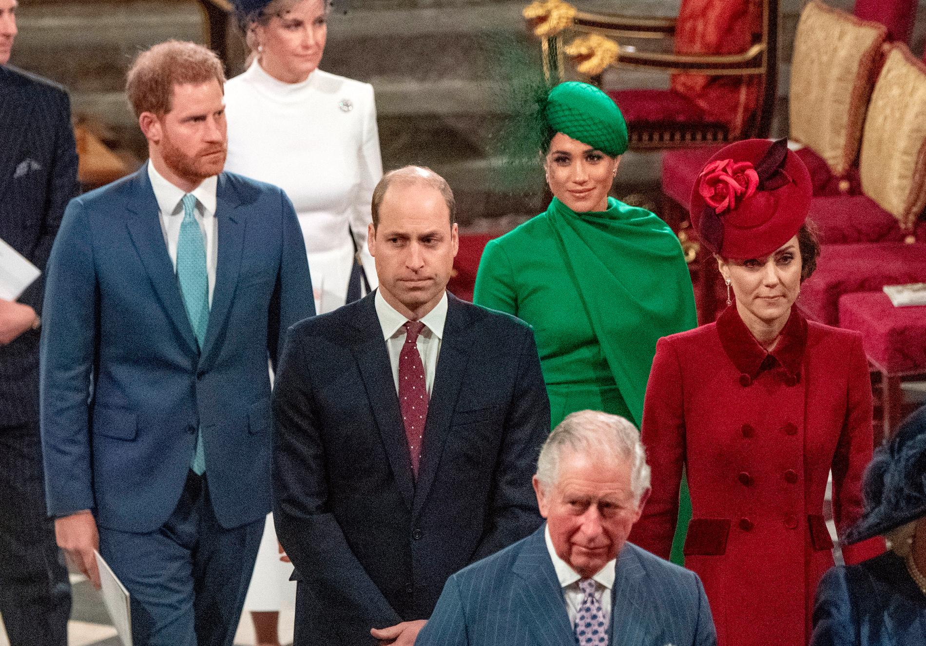 Prinsarna Harry och William med pappa prins Charles och Meghan och Kate. Arkivbild