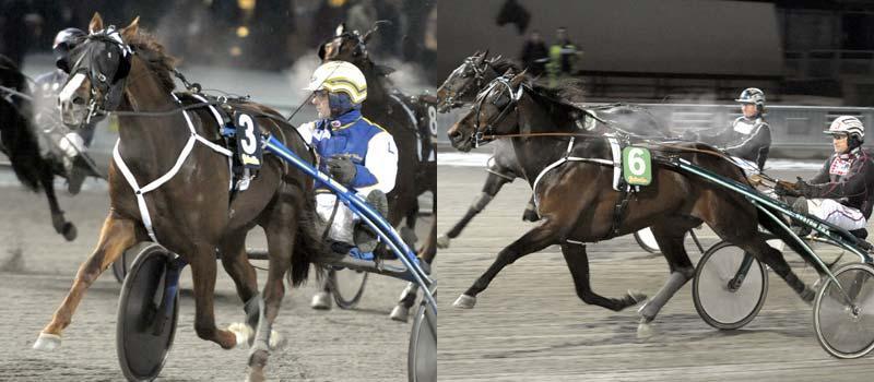 Seeger Turbo Viking och Marshland visade upp sig på Solvalla.