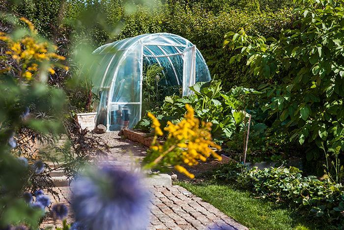 Tunnelväxthuset i plast förlänger odlingssäsongen och har fördelen att det är relativt billigt i inköp.