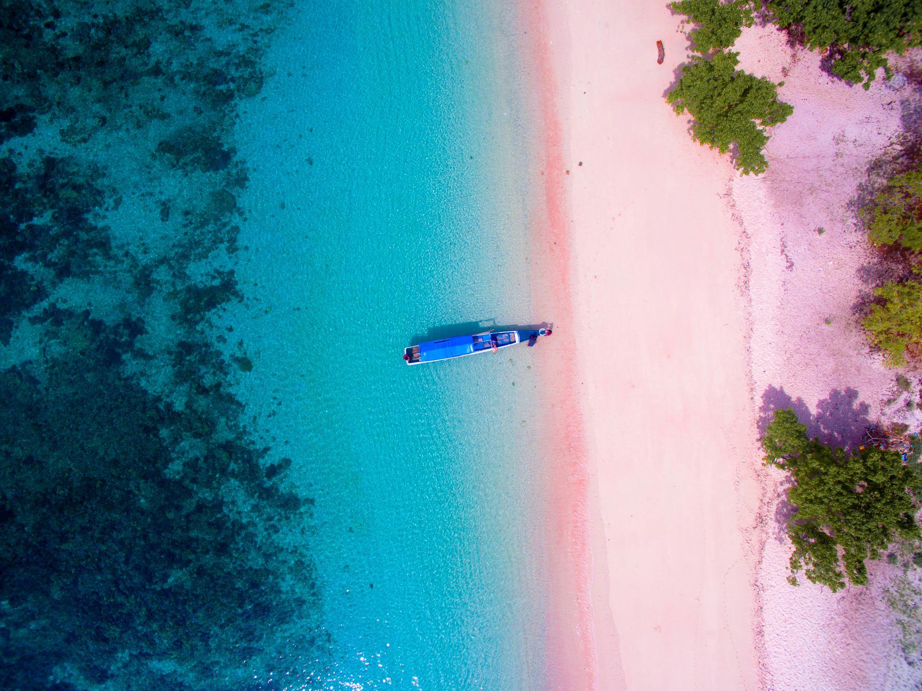 Förutom komodovaranerna är ön känd för sin rosa strand.
