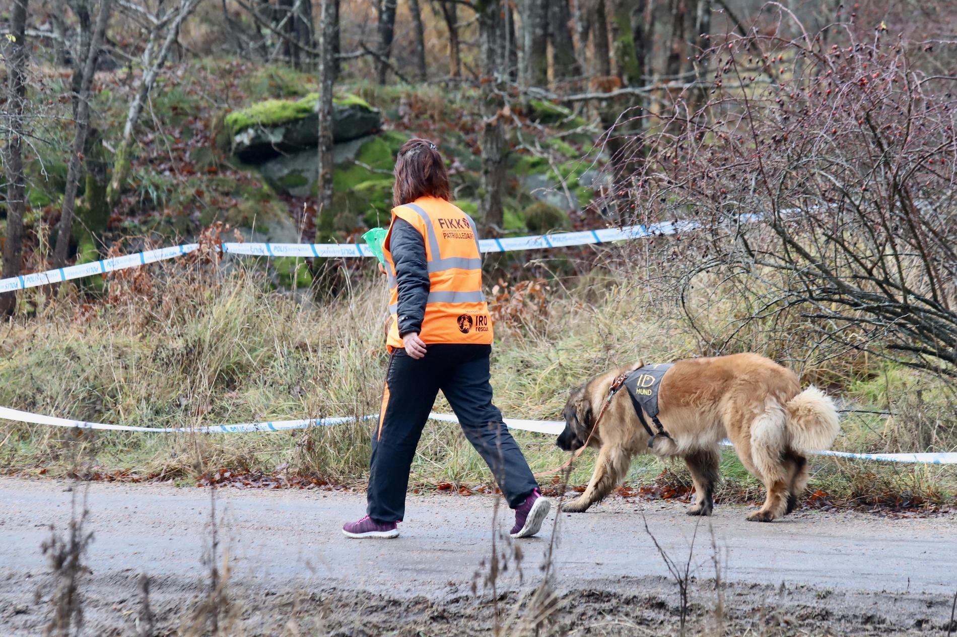 Flera fynd har gjorts i terrängen som kan ha koppling till Wilma som ännu inte är anträffad.