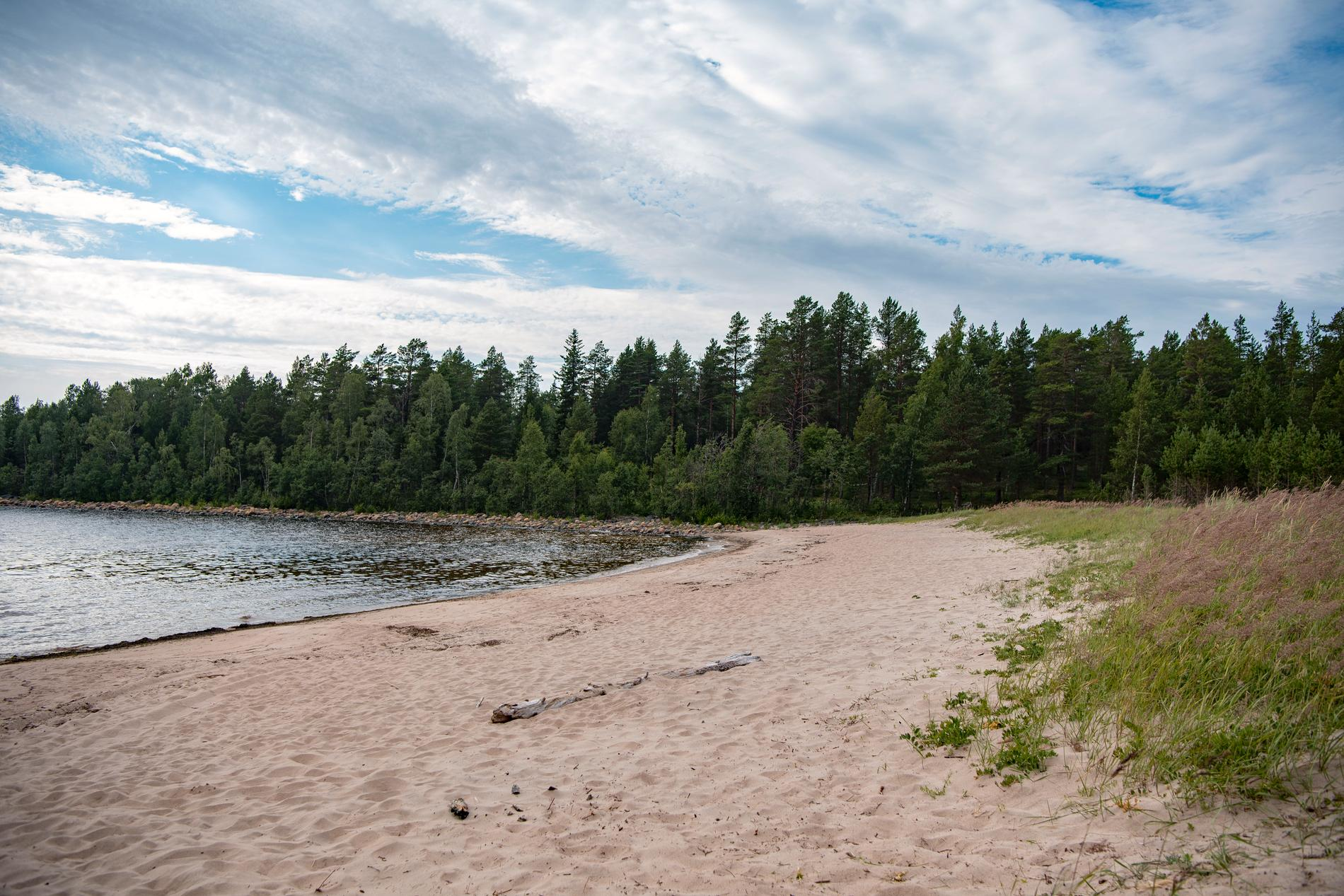 """En öde strand på Seskarö i Haparanda Skärgård kan snart komma att fyllas med rekvisita för """"Robinson""""-tävlingar."""
