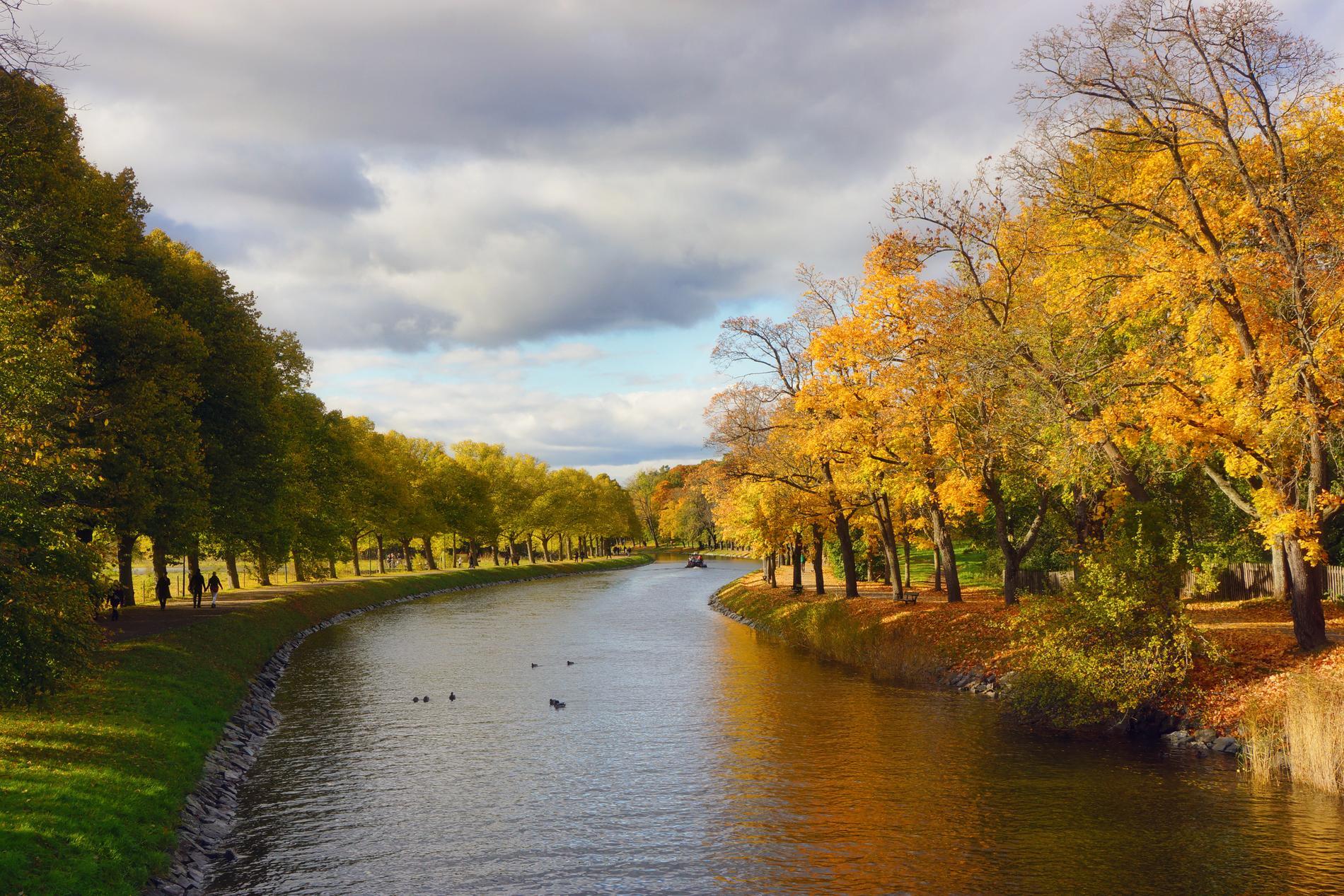 Ute på Djurgården känns storstaden långt borta.