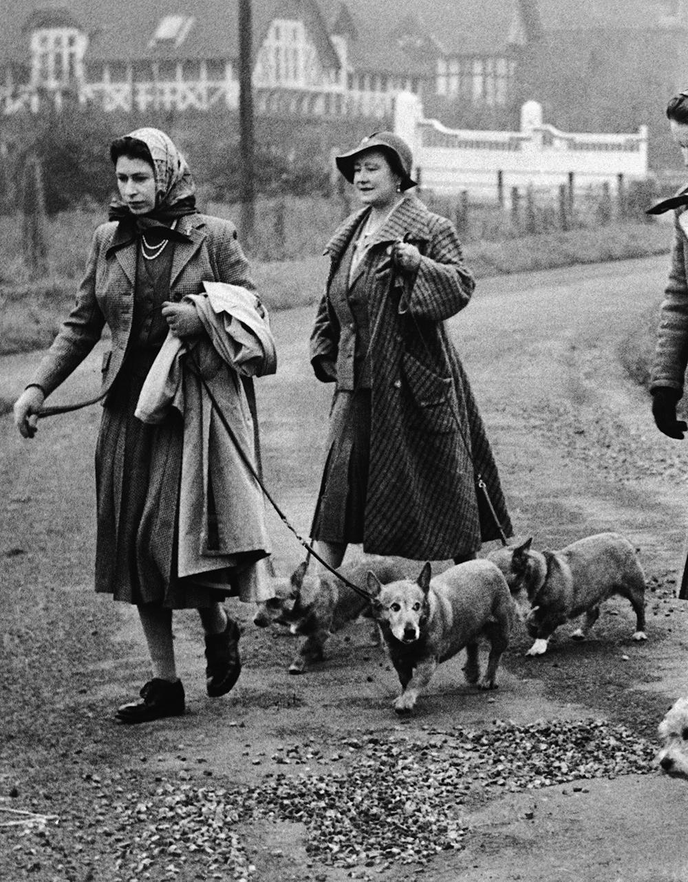 Drottning Elizabeth och hennes mamma rastar hundarna vid Sandringham.