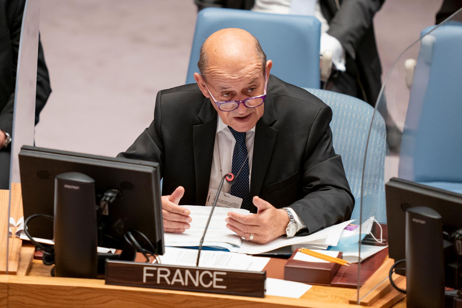 Frankrikes utrikesminister Jean-Yves Le Drian vid ett möte i FN.